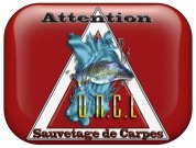 Attention sauvetage de carpes UNCL 1