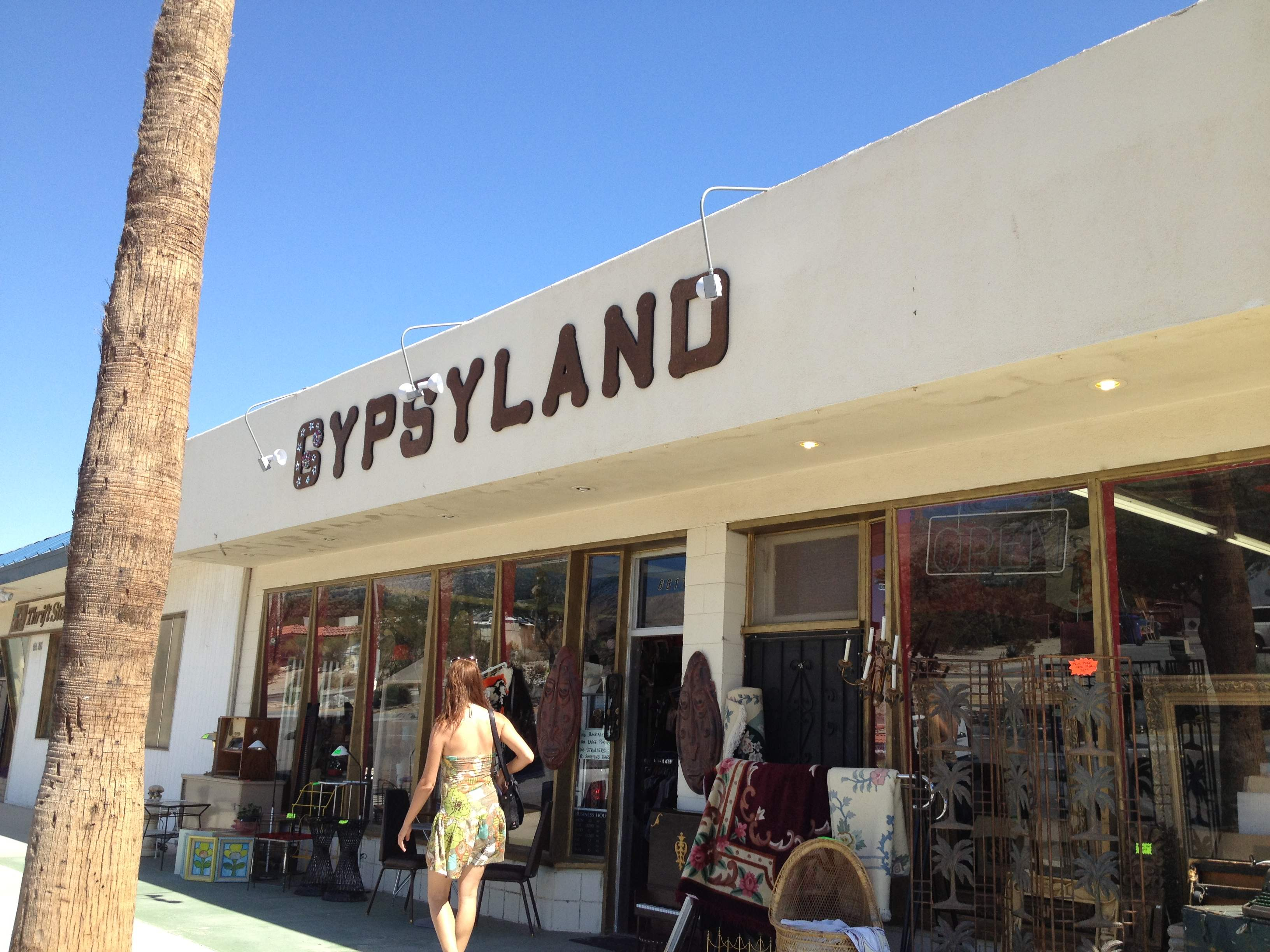 Day 22 Vintage And Thrift Shopping In Palm Springs LA