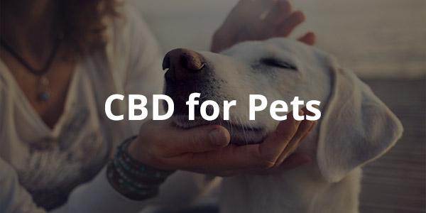 LA|CBD CBD for Pets