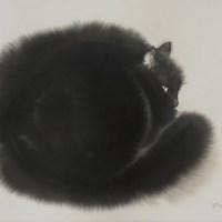 Las acuarelas de gatos de Endre Penovác