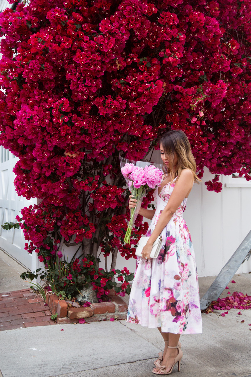 petite fashion blog, lace and locks, los angeles fashion blogger, fit and flare floral dress, asos dress, spring outfit ideas, ysl chain wallet, bow heels, peonies fashion