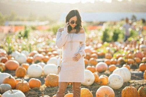 lace and locks, fall sweater dress, petite fall fashion