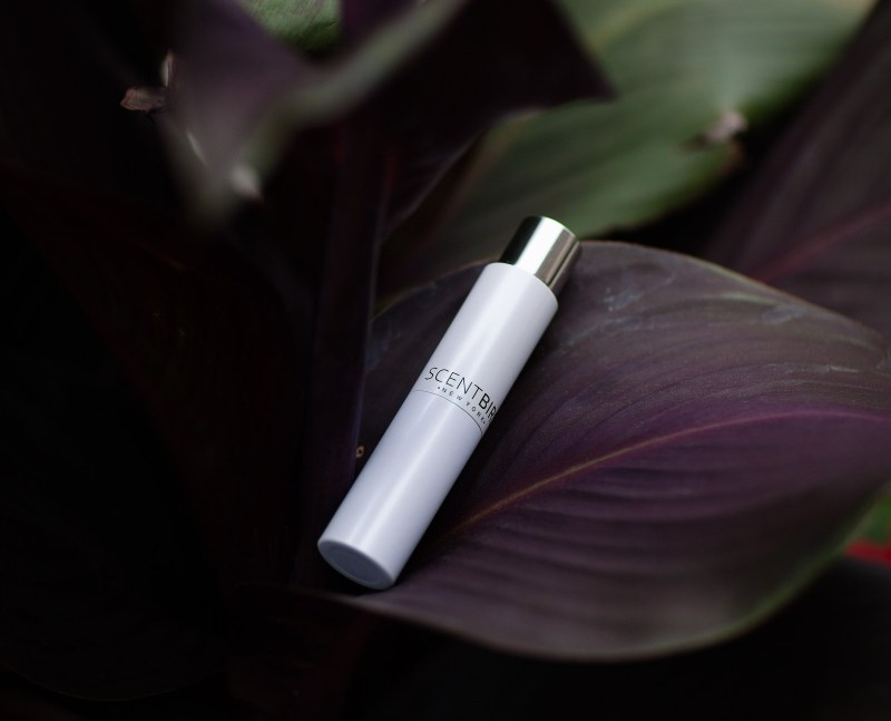 A few weeks ago, I stumbled upon Scentbird, a perfume subscription service. Like most subscription service, you're first prompted to create a style profile.