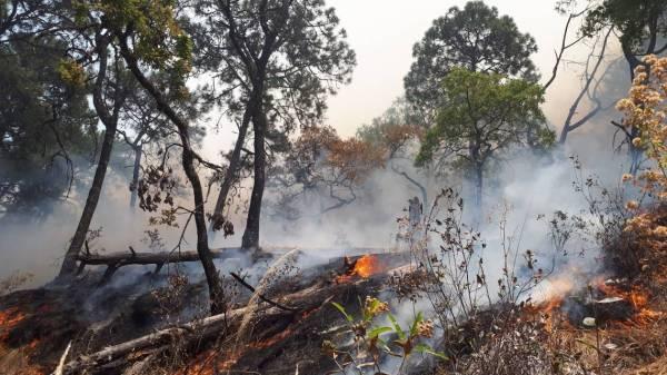 Protección Civil de Xochitepec, Morelos alertó incremento de incendios durante este 2021