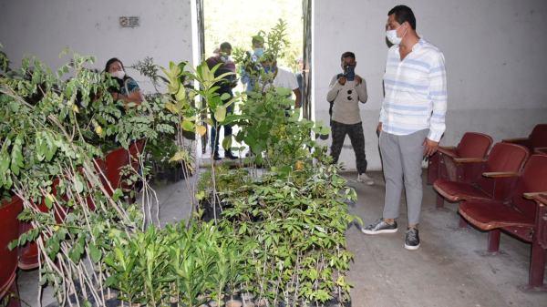 Reforestación en Jojutla: ayuntamiento entregó mil 900 árboles para sembrar en áreas verdes y combatir cambio climático