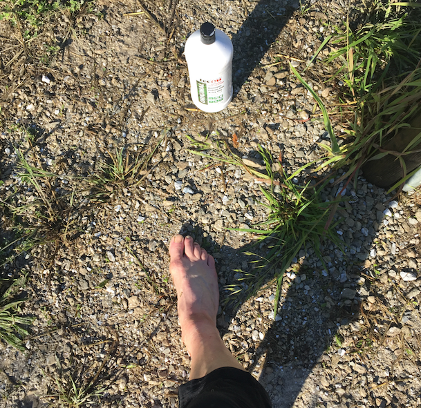 At some point on this leg, I took the time to scrub some poison ivy off my legs. Life saver, this stuff.