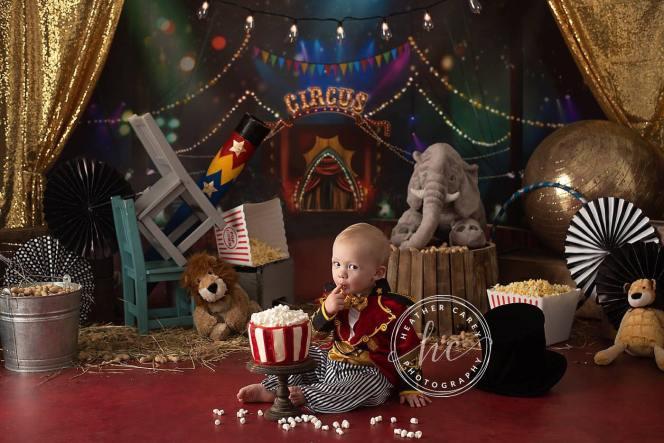 Circus themed cake smash photography backdrop