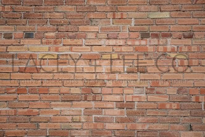 Muted Brick Photography Backdrop