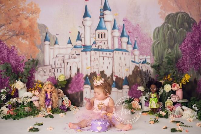 Charming Princess Cake Smash photography Backdrop