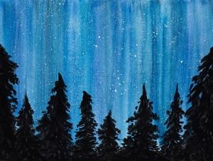 Night time sky Photo Backdrop