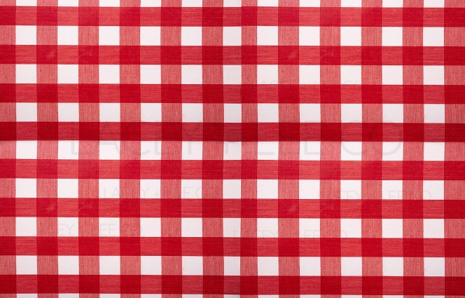 Red and white picnic blanket photo backdrop