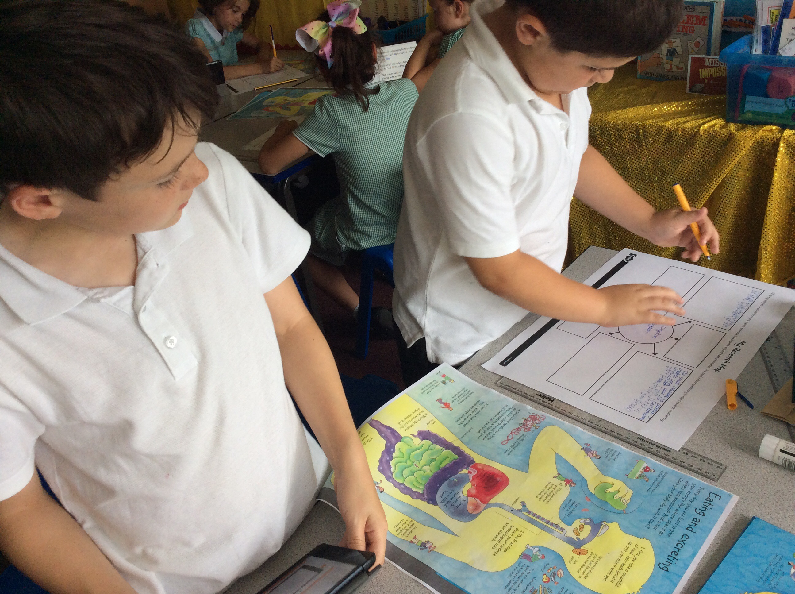 4w The Digestive System Lacey Gardens Year 4 Blog