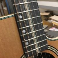 Modèle sur mesure d'une guitare 8 cordes Alhambra pour Los Secretos