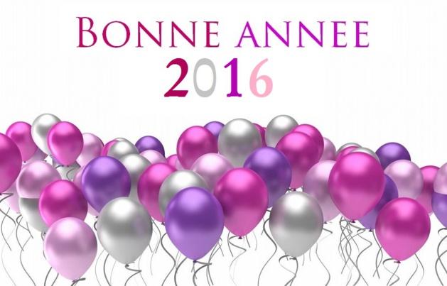 Bonne année 2016 aux Écuries de la Chevée