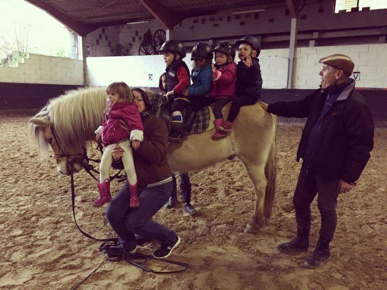 Le cours des Baby-poney