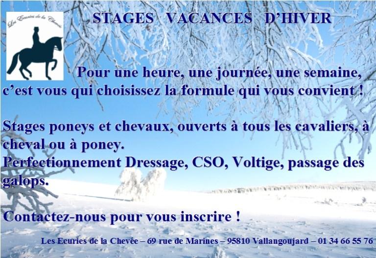 Stages Chevaux et poneys vacances d'hiver
