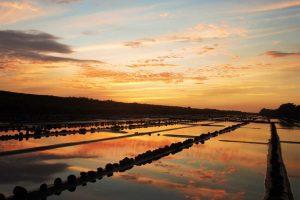 El Paredon sunset