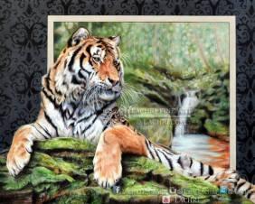 Tiger in colored pencil