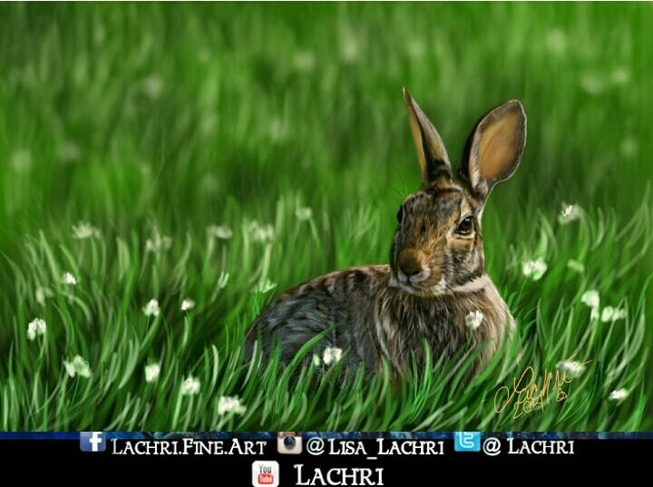 bunny digital painting