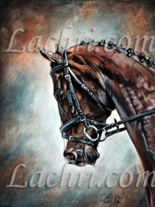 Horse in colored pencil