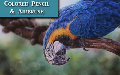 Colored Pencil Tutorial