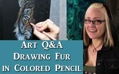 Art Q&A Drawing Fur
