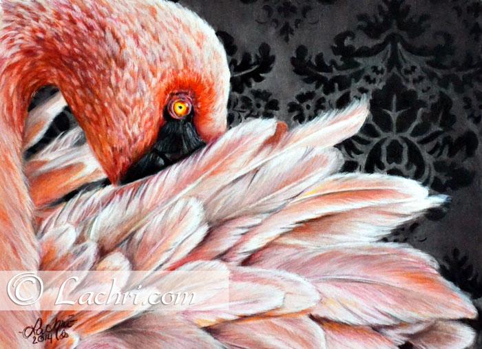 Flamingo in prismacolor colored pencil