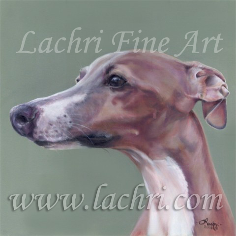 Italian Greyhound oil over acrylic painting