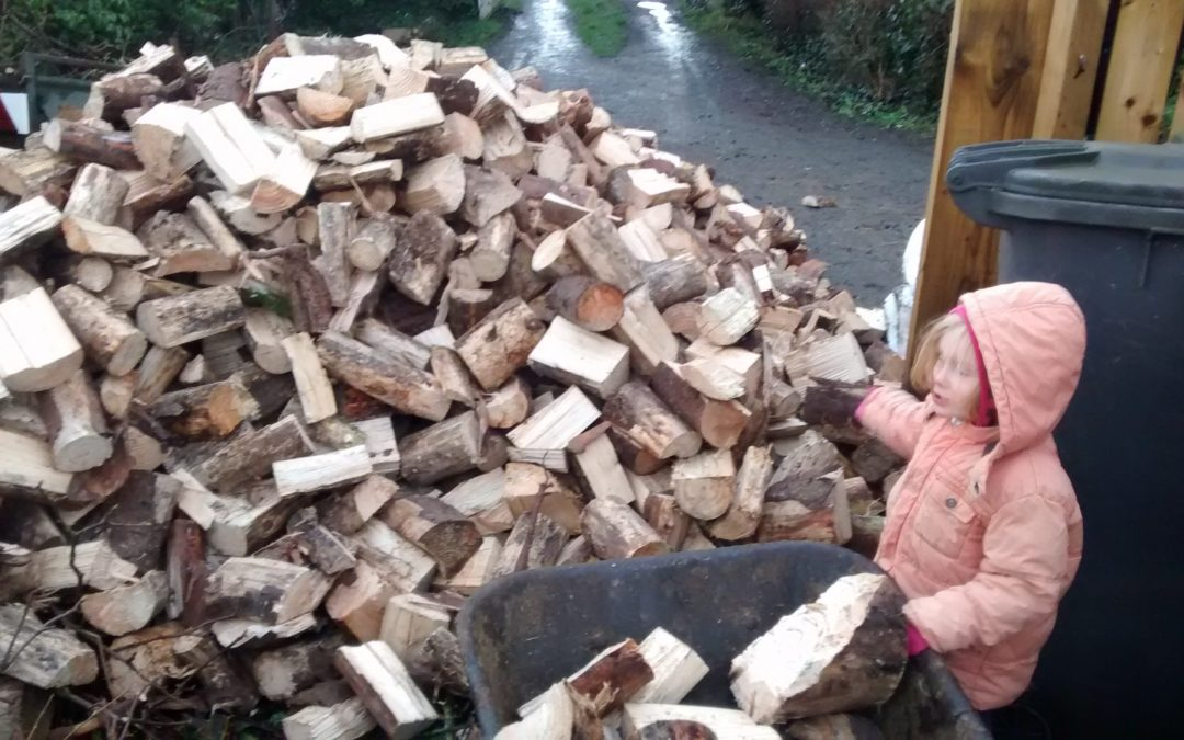 Filling up with firewood