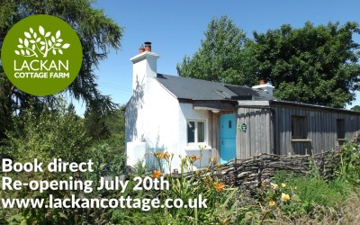 Enjoy a safe and relaxing stay in a rural setting