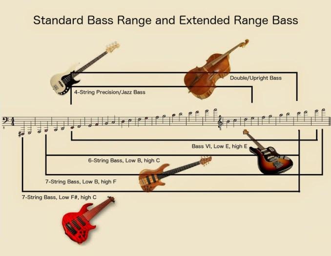 standard-bass-and-erb