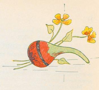 """GUAJE DE OLINALA, GUERRERO""."" Decorated Gourd….13"