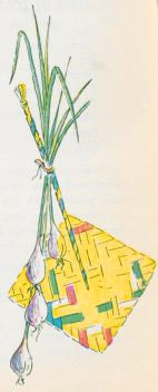 """""""SPOLADOR DE OAXACA"""". Straw fan used all through Mexico to keep the fire burning. As in most Mexican kitchens wood coal is used """"sopladores"""" are indispensable….61"""