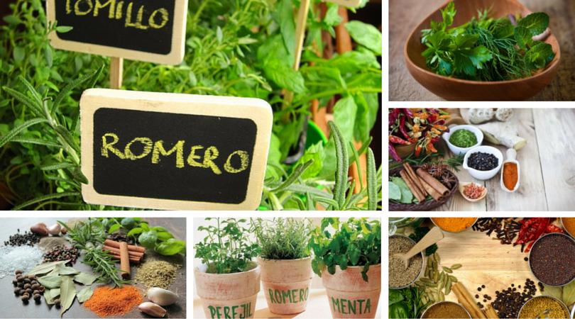 Propiedades de las hierbas y especias -La Cocina Ortomolecular