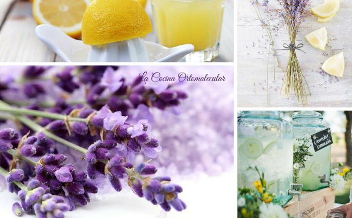 Agua detox de lavanda y miel