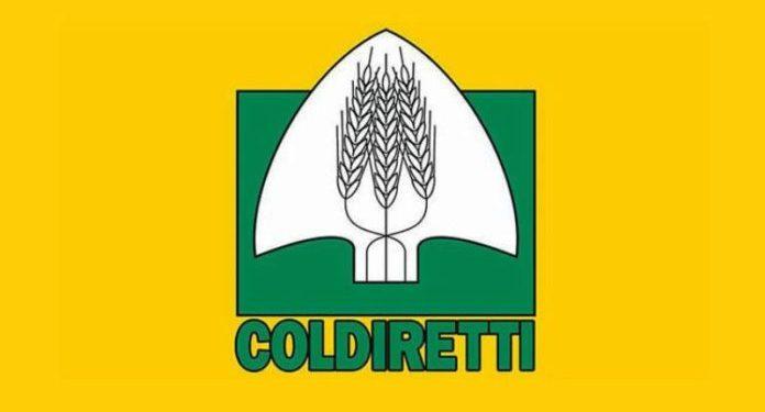 Coldiretti Calabria: allevatori in difficoltà corsa dei prezzi in un anno per alimentazione animali nelle  stalle