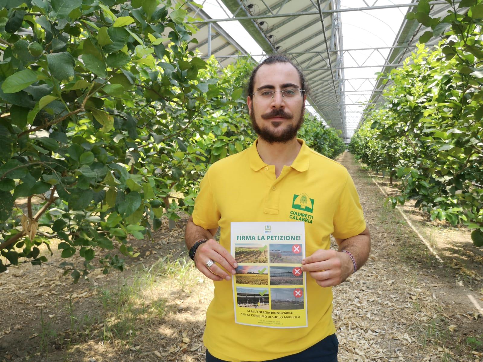 Coldiretti Calabria clima: i giovani agricoltori calabresi lanciano la petizione contro i pannelli mangia suolo