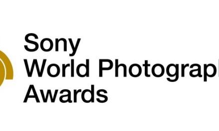 Avem trei romance între primii 50 fotografi din lume la secțiunea Open a Sony World Photography Awards!