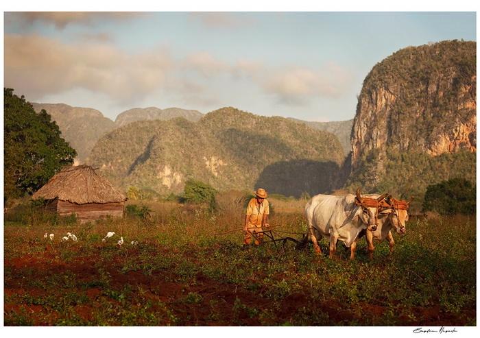 Povesti despre fotografie cu fotografi din Romania, vol. 3