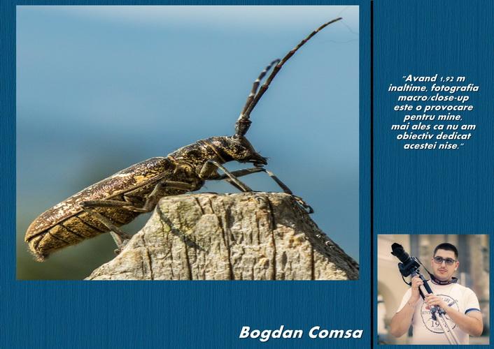 Bogdan Comsa resize