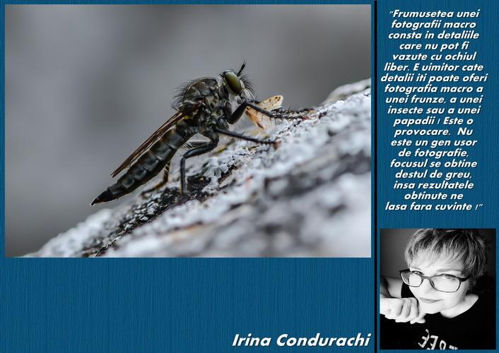 irina condurachi resize