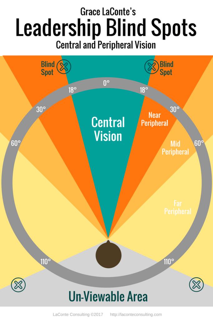 blind spots, blind spot, leadership blind spots, central vision, peripheral vision, unviewable area