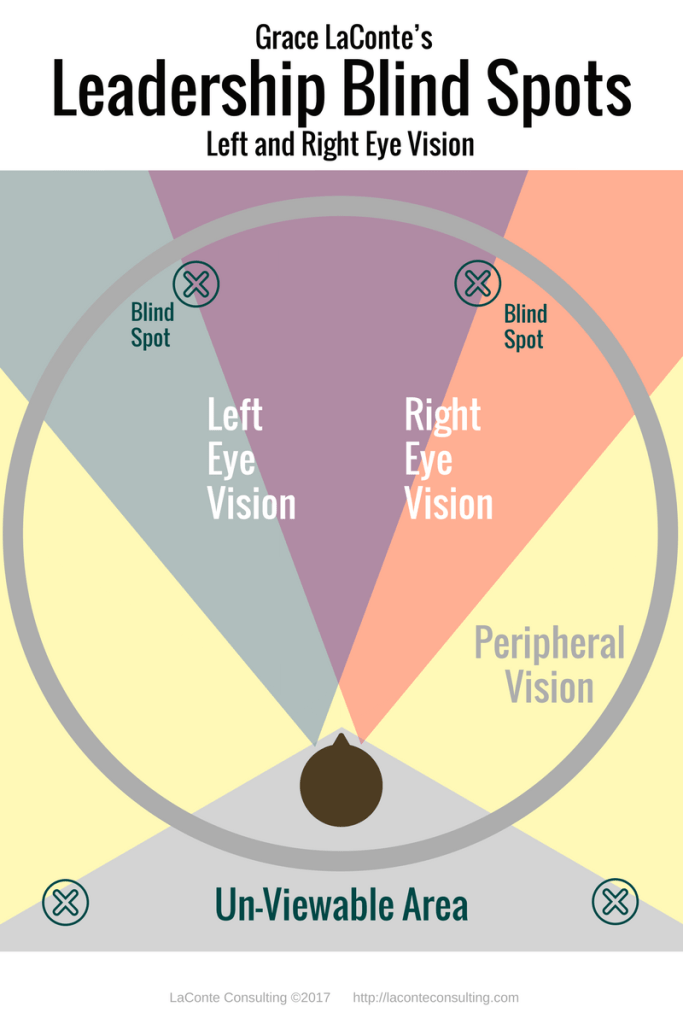 Leadership Blind Spots - Right and Left Vision