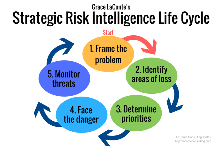 strategic risk, risk intelligence, 5-part model, problem solving