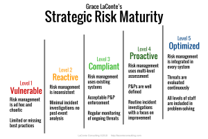 strategic risk, risk management, strategic plan, risk maturity