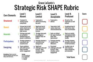 strategic risk, strategic planning, risk rubric, strategic SHAPE, strategy tool
