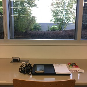 new workspace, new workplace, library desk, natural light, tree view, Minimalist Manager