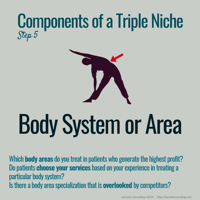 triple niche, niche, niche market, niche marketing, niche practice, practice niche, niche practitioner, demographics, body system, body area