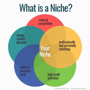 niche, what is a niche, niche practice, practice niche, niche practitioner, healthcare niche, niche business, niche marketing, marketing strategy