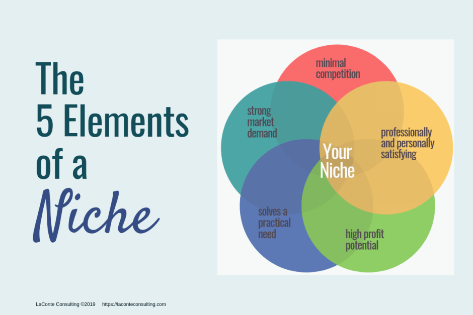 niche, niche elements, niche marketing, niche diagram, Venn diagram, niche components, niche strategy, marketing strategy